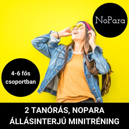 nopara-allasinterju-minitrening-converzum