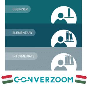 Мобильное приложение ConverZoom